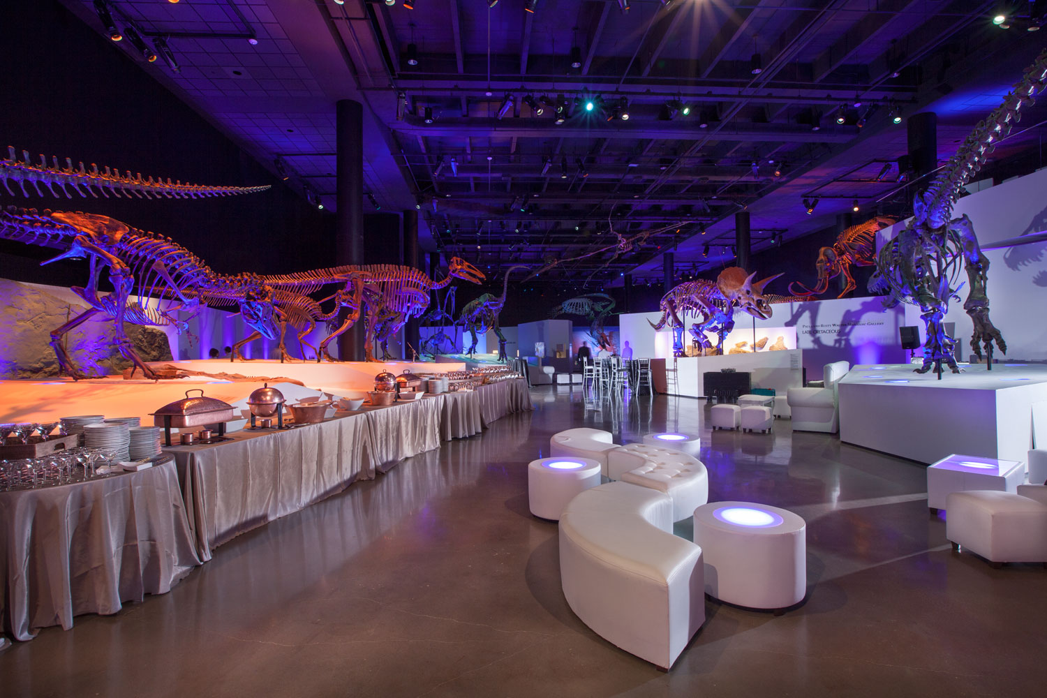 Houston Museum Of Natural Science Banquet Hall