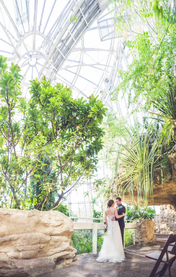Museum Of Natural Science Wedding