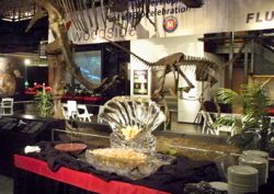 Rent The Museum | Houston Museum Of Natural Science