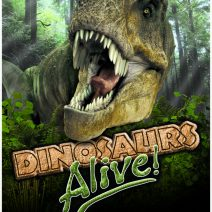 3DinoPoster
