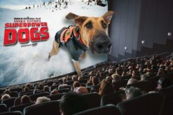 A rescue dog in Superhero Dogs 3D leaps off the screen in this dynamic film about rescue animals.