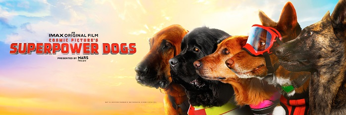 Image shows the canine stars of the Imax film Superpower Dogs now showing in the wortham giant screen theatre