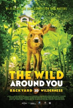 "Movie Poster for ""The Wild Around You"" giant screen film. Shows a young fawn surrounded by foliage and looking at the camera."