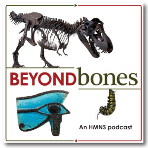 """The words """"Beyond Bones an HMNS Podcast"""" are written in red and black and are surrounded by images of an artifact from ancient egypt, a t. rex skeleton and a monarch butterfly caterpillar."""