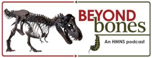"""Image shows the words """"Beyond Bones an HMNS Podcast"""" in red and black, surrounded by a t. rex skeleton and monarch butterfly caterpillar."""